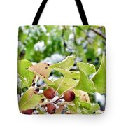 Snow On Green Leaves With Red Berries Tote Bag