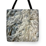 Snow On Ice Tote Bag
