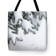 Snow On Winter Branches Tote Bag by Elena Elisseeva