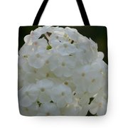 Snow Phlox Tote Bag