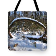 Snow Portal A Fallen Vine Forms An Oval Shape Covered In Snow. Tote Bag