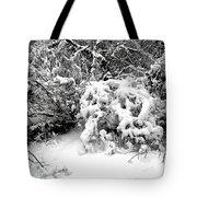 Snow Scene 1 Tote Bag by Patrick J Murphy