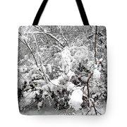 Snow Scene 4 Tote Bag