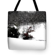Snow Scene 6 Tote Bag