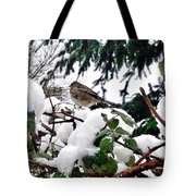 Snow Scene Of Little Bird Perched Tote Bag