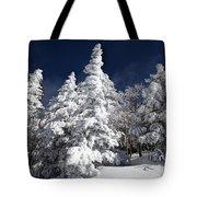 Snow Spruce Sunshine Tote Bag