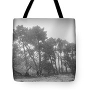 Snow Storm At The Mountains Tote Bag