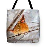 Snow Surprise - Painterly Tote Bag
