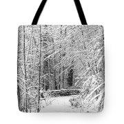 Snow Wall Tote Bag