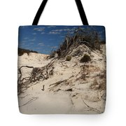 Snow White Dunes Tote Bag by Adam Jewell