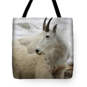 Snow White Mountain Goat Tote Bag