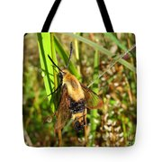 Snowberry Clearwing Tote Bag