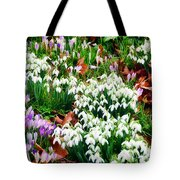 Snowdrops And Crocuses Tote Bag