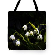 Snowdrops And Dark Background Tote Bag
