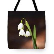 Snowflake Flowers Tote Bag
