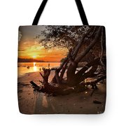 Snow's Cut Driftwood Sunset Tote Bag