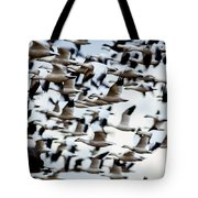 Snows Ross And Aleutians Tote Bag