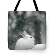 Snowshoe Hare In Snowfall Yellowstone Tote Bag