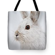 Snowshoe Hare Pictures 128 Tote Bag