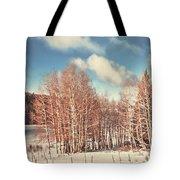 Snowy Aspens  Tote Bag