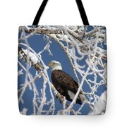 Snowy Bald Eagle Tote Bag