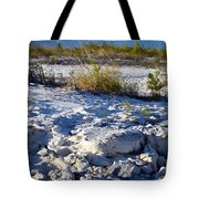 Snowy Beach Tote Bag
