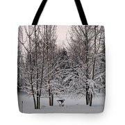 Snowy Bird Bath Tote Bag