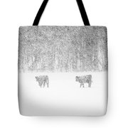 Snowy Day Highland Cattle Tote Bag