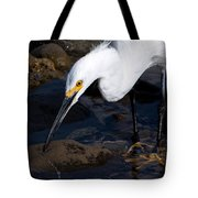 Snowy Egret Dribble Tote Bag