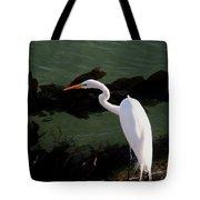 Great Egret Monterey Bay California  By Pat Hathaway Tote Bag