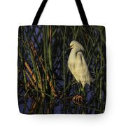 Snowy Egret In The Reeds Tote Bag
