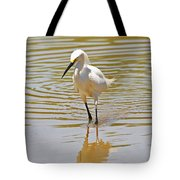 Snowy Egret Looking For Fish Tote Bag