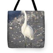 Snowy Egret Pose Tote Bag