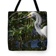 Snowy Egret Stalking Tote Bag