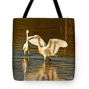 Snowy Egret Wingspan Tote Bag