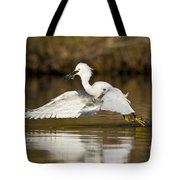 Snowy Egret With Lunch Tote Bag