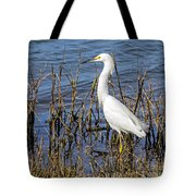 Snowy Foraging Tote Bag
