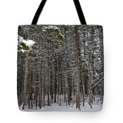 Snowy Forest In Acadia Tote Bag