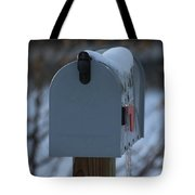 Snowy Kansas Mailbox Tote Bag by Robert D  Brozek