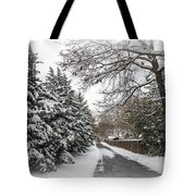 Snowy Lane Tote Bag