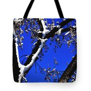 Snowy Limbs 14051 Tote Bag