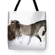 Snowy March II Tote Bag