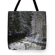 Snowy Oregon Stream Tote Bag