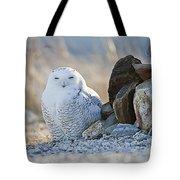 Snowy Owl Among The Rocks Tote Bag