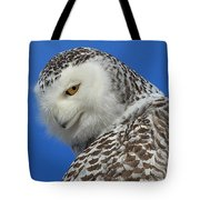 Snowy Owl Greeting Card Tote Bag by Everet Regal