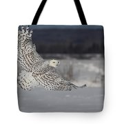 Snowy Owl In Flight Tote Bag by Mircea Costina Photography