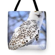 Snowy Owl Look Out Tote Bag
