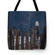 Snowy Owl On A Fence Tote Bag
