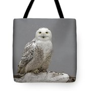 Snowy Owl On An Ice Flow Tote Bag