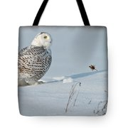 Snowy Owl Pictures 53 Tote Bag
